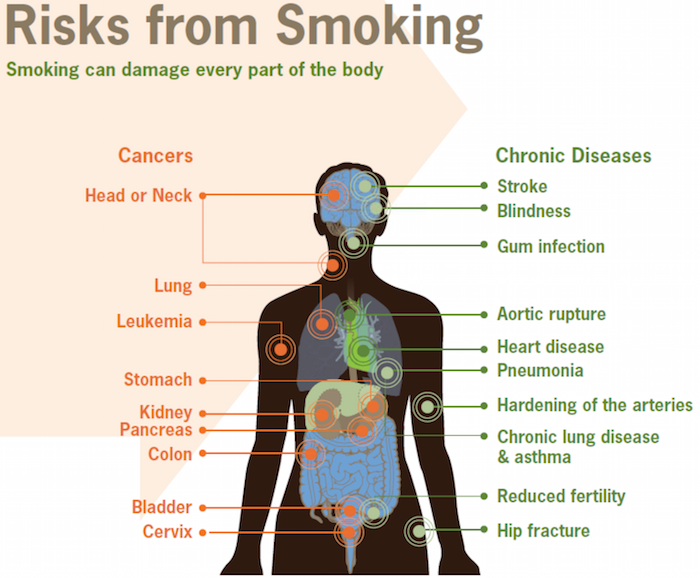 CDC Risks from Smoking